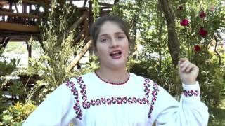 Claudia Meicu - Geamparalele