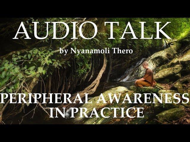 GUIDED CONTEMPLATION - Awareness - by Ajahn Nyanamoli Thero, Hillsidehermitage.org