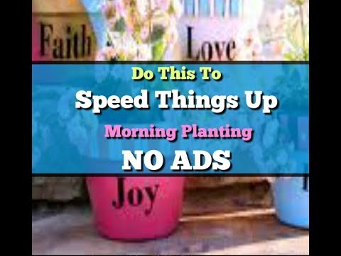 Abraham Hicks ♥ Do this to speed things up~  Morning planting!