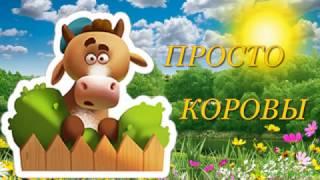 Коровы весной  Домашние животные
