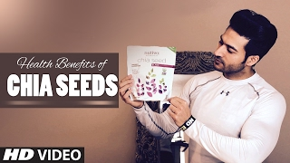 Health Benefits Of CHIA Seeds for weight loss, heart, brain & Skin | Guru Mann