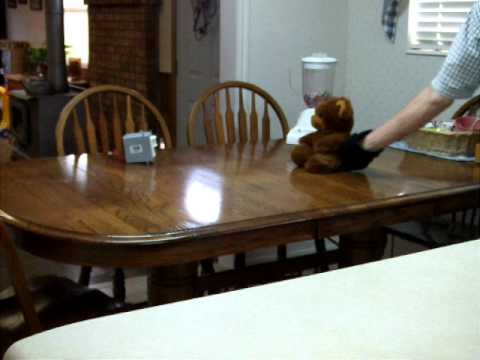 Keeping The Cat Off The Table