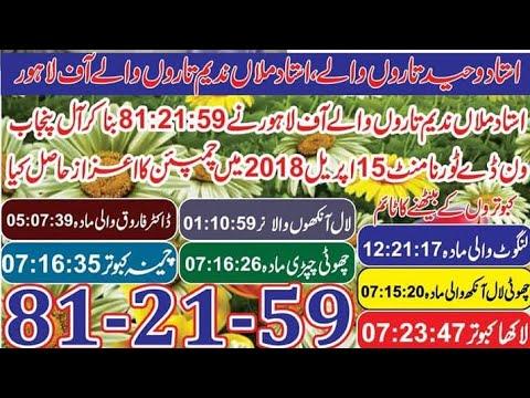Lahore champion one day Punjab 15:4:2018 Ustad mulan nadeem tarown Waly of Lahore pigeons kabootar