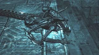 недороботка в игре Aliens vs. Predator 2010 Компания за Чужого