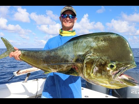 INSANE Offshore FISHING in Grand Cayman Pt 1