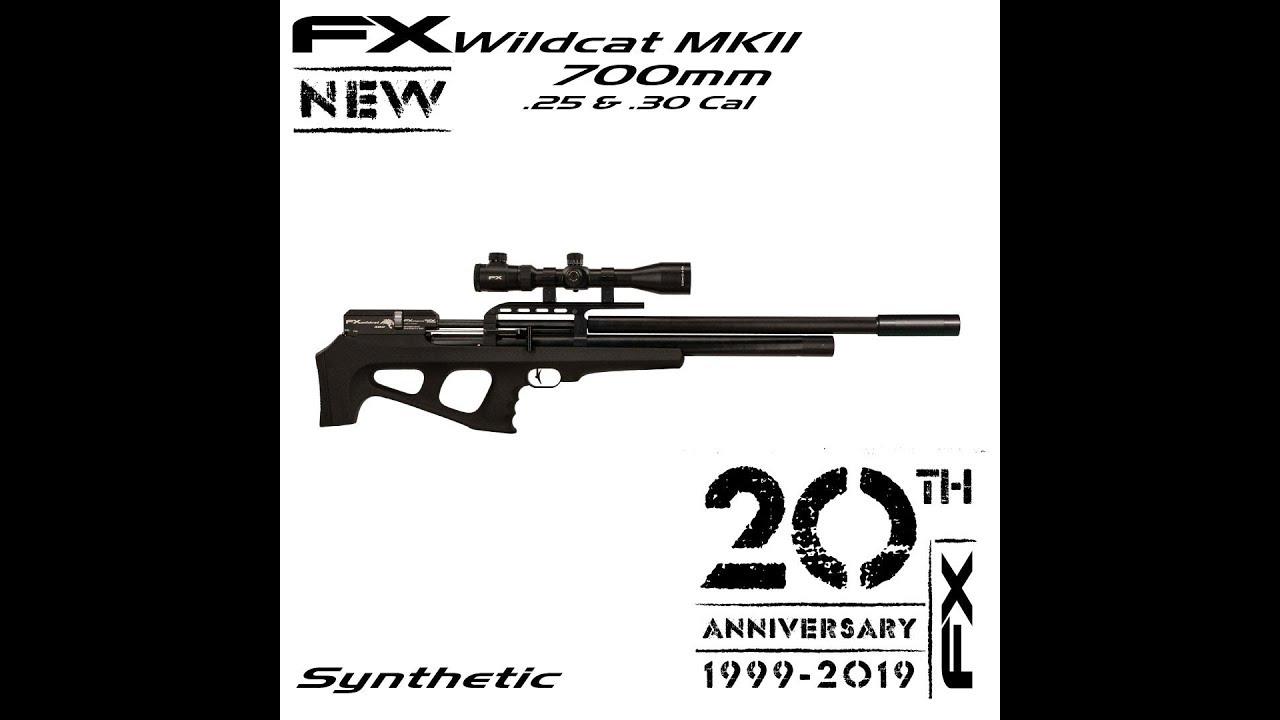 IWA 2019 - New FX Wildcat MKII 700mm  25 Caliber