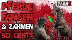 Pferde fangen & zähm Guide - Red Dead Redemption 2 Deutsch Wildpferde Tipps & Tricks
