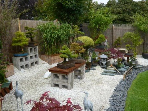 walk in bonsai garden