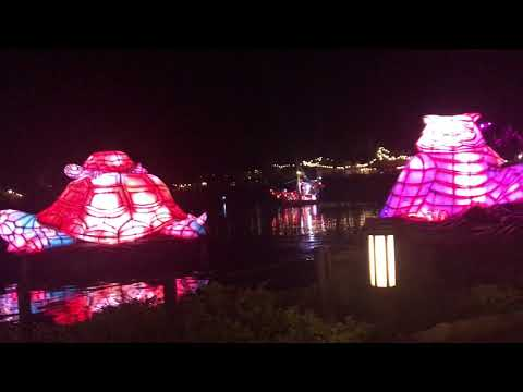 Disney's Animal Kingdom River of Lights Show