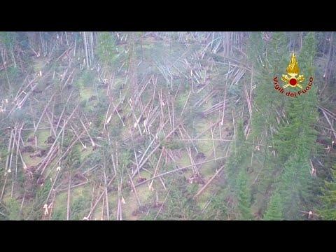Violent Storms Flatten Forests In Italy's Belluno