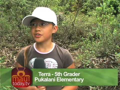 Pukalani Elementary School's Hosmer's Grove Hike, in Haleakala National Park 2007