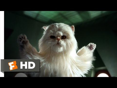 Cats & Dogs (7/10) Movie CLIP - Our Day Has Come! (2001) HD