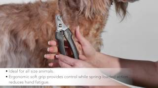 Andis Premium Pet Grooming Tools - Large Nail Clippers