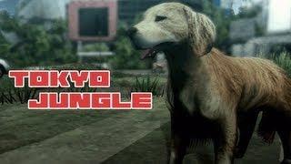 Tokyo Jongle