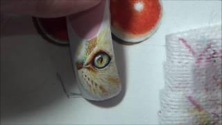 Рисунок кошки на ногтях/Painting the nails from Anna Kuzubova , cat in watercolor