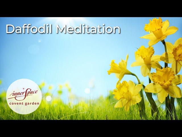 Daffodil | Guided Meditation