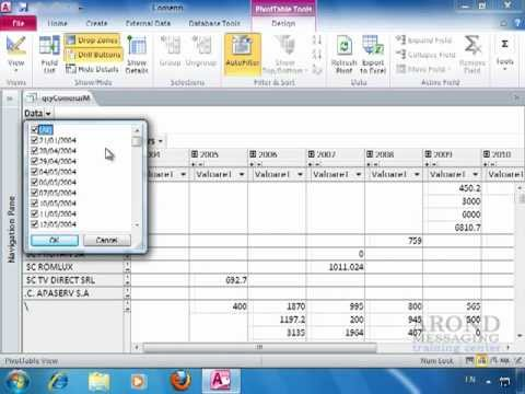 Using Access 2010 Summarize A Datasheet With A Pivottable Youtube
