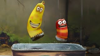 LARVA - RAIN DANCE | Cartoon Movie | Cartoons For Children | Larva Cartoon | LARVA Official