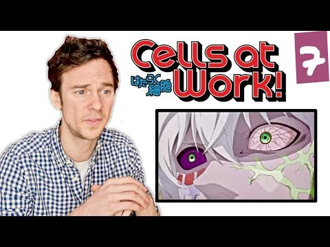 DOCTOR reacts to CELLS AT WORK! // Episode 7 // 'Cancer Cell'