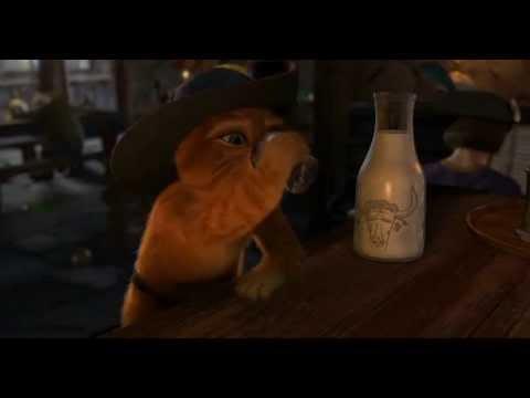 Nienawidze Poniedziałków Kot Shrek 2 Youtube