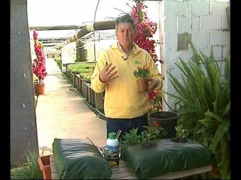 El jardinero en casa huertos urbanos youtube for Jardinero en casa