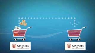 How to Migrate Magento to Magento