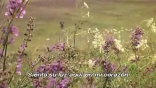 Hermano Sol, Hermana Luna subtitulada