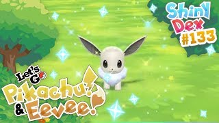 COMPETITIVE SHINY EEVEE in POKEMON LETS GO PIKACHU AND EEVEE!