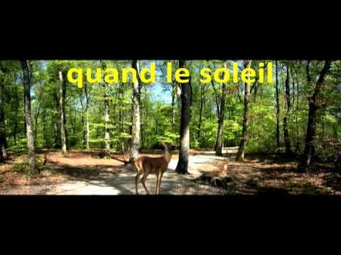 Chanson pour enfants - La forêt (version Karaoké)