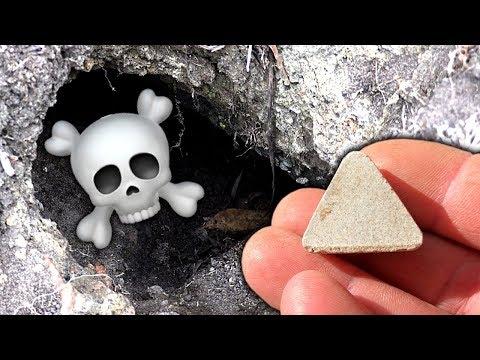Mystery Treasure Pet Gravestone Cicada Holes & Rats Eat Fluffy Cats Food