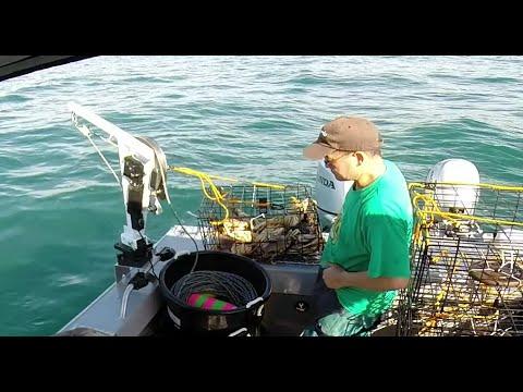 Half moon bay crab limits 11 8 14 last pot of the day for Half moon bay fishing report