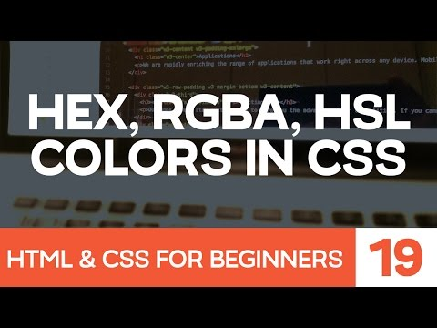 HTML & CSS For Beginners Part 19: Colors With CSS - Hex, Rgba, And Hsla