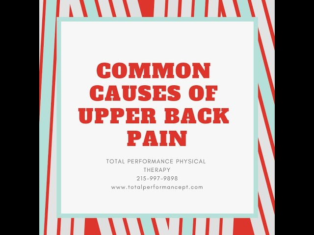 Common Causes of Upper Back Pain | Total Performance Physical Therapy | 215.997.9898