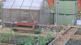 Weaste Allotments 01 05 2015