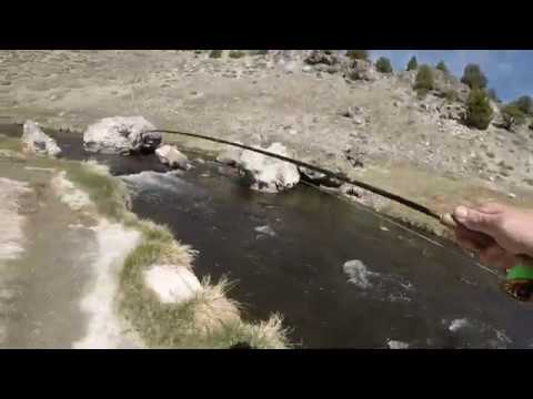 Euro Nymphing | Fly Fishing Hot Creek Eastern Sierras