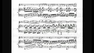 Brahms Violin Sonata No.1 in G major Op.78 (3/3)