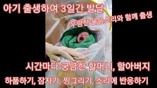 아기출생하여 3일간 발달단계