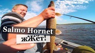 ✅ Рыбалка на озере Ладога. 2017.  Ловля щуки и окуня.