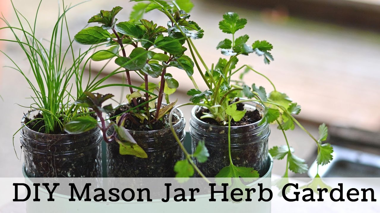 How To Make A Windowsill Herb Garden, Simple Garden Gift