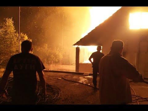 Η Χρυσή Αυγή δίνει μάχη με τις φλόγες στην Κινέτα