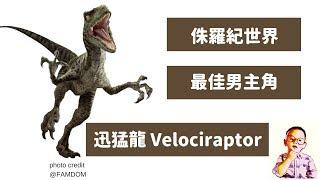 ????侏羅紀世界殞落國度 最佳男主角 迅猛龍的真面目其實是....Velociraptor