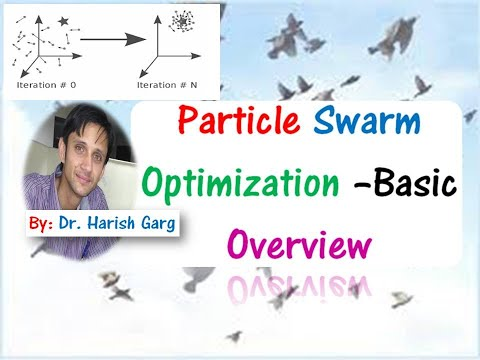 Particle Swarm Optimization (PSO): Basic Overview & Step-by-Step  Explanations