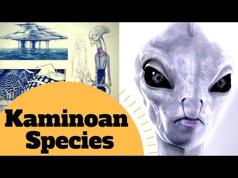 KAMINOAN SOCIETY IS DARK! - Kaminoan Species Lore - Star Wars Cannon & Legends Explained