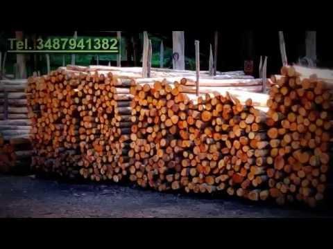 Cancelli Di Legno Prezzi : Vendita pali di castagno recinzioni staccionate cancelli in