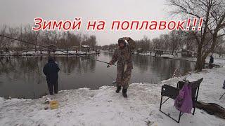 Карасі, тарань, козлики, густера, окунь, судак взимку на поплавок