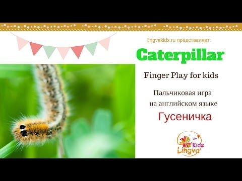ПЕСНИ ПРО ОСЕНЬ -