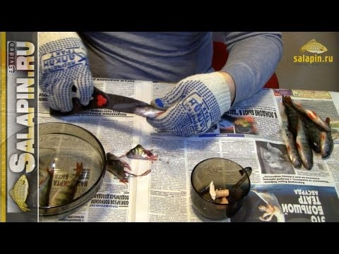 рецепт уловистого технопланктона