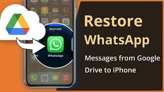 [Solved] How To Restore WhatsApp Messages from Google Drive to iPhone 2021