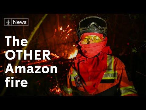 The other Amazon