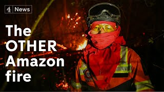 The other Amazon forest fire - that no one is talking about